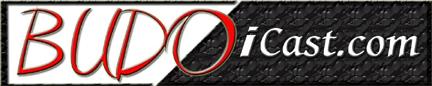 BUDO i Cast logo